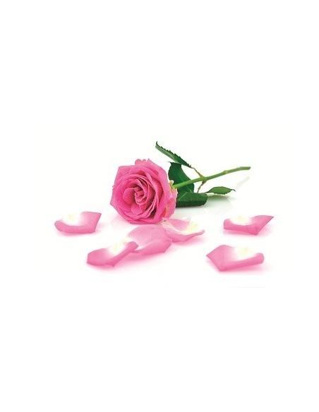 Olio Essenziale di Legno di Rosa, BIO - 5 ml