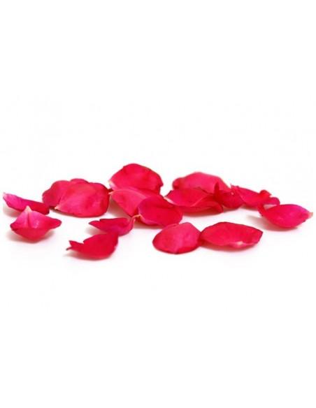 Rosa assoluta*, CONV - 1 ml