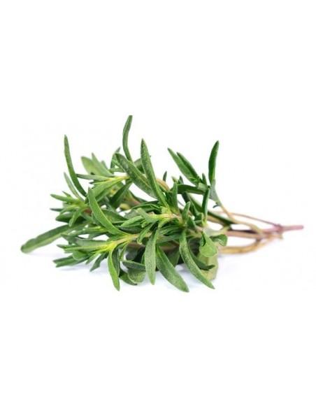 Olio essenziale di Rosmarino spagna, BIO - 5 ml