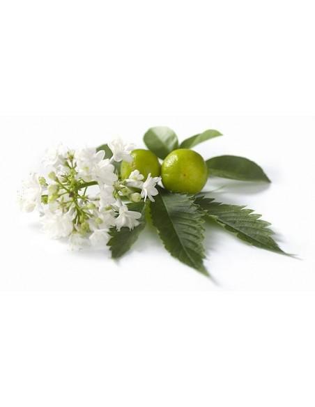 Olio Essenziale di Patchouli - 5 ml