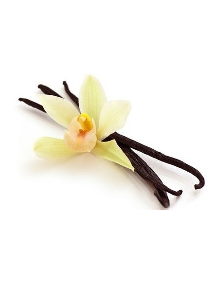 Olio Essenziale di Vaniglia, BIO - 5 ml